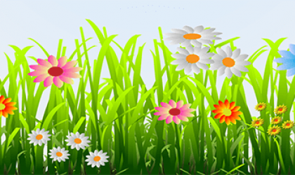 Image of a flower garden fits the gardening theme of the Ladies Night Out